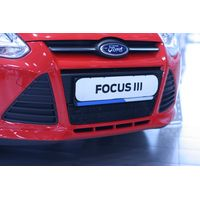 Защитная сетка радиатора в бампер для FORD Focus III 2011-2015, чёрная, 15 мм